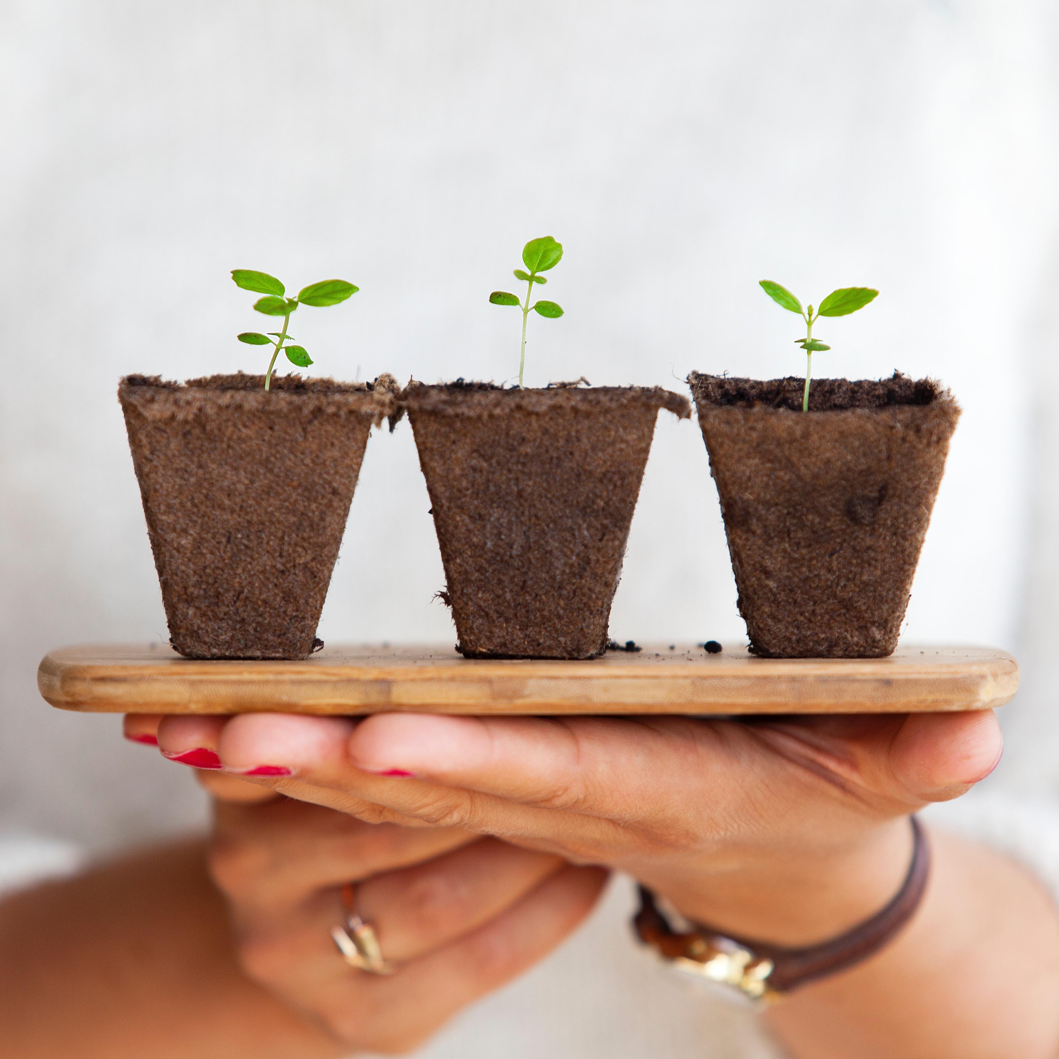 Image principale de l'article Epargne: Quelle assurance vie choisir pour faire fructifier un capital sans risque ?